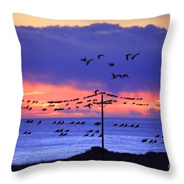 Throw Pillow featuring the photograph Parrots by Bernardo Galmarini