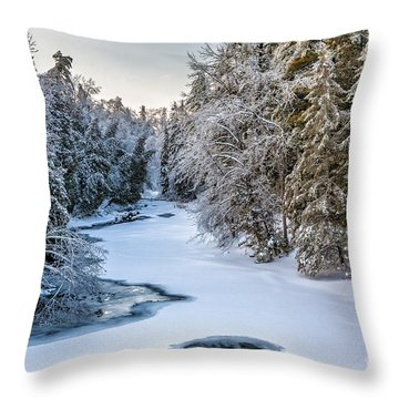 Parrotts Bay II Throw Pillow