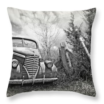 Part Of The Landscape Throw Pillow