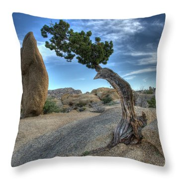 Partners Throw Pillow by Bob Christopher