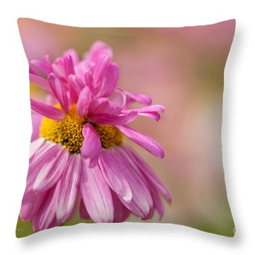Party Girl Throw Pillow by Beve Brown-Clark Photography