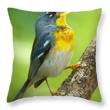 Parula Song Throw Pillow