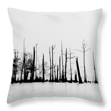 Throw Pillow featuring the photograph Pass Manchac by Charlotte Schafer