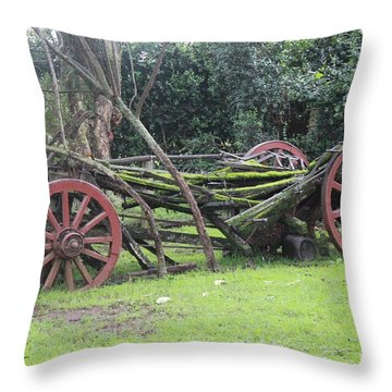 Passage Of Time All Profits Go To Hospice Of The Calumet Area Throw Pillow