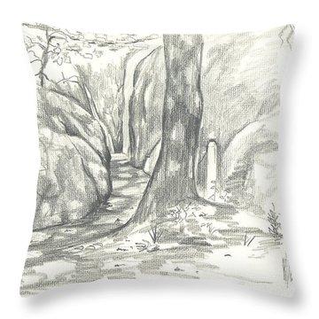 Passageway At Elephant Rocks Throw Pillow
