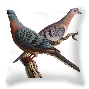 Passenger Pigeon  Throw Pillow by Spencer Sutton