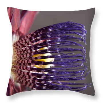 Passiflora Alata - Passion Flower - Ruby Star - Ouvaca Throw Pillow by Sharon Mau