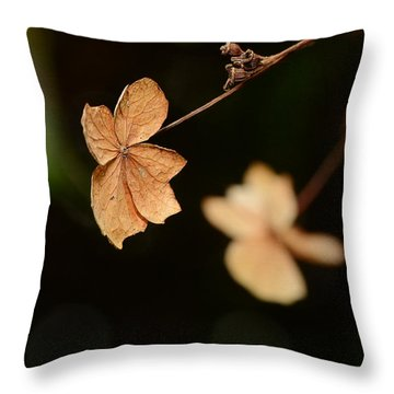 Passing Throw Pillow by Lisa Knechtel