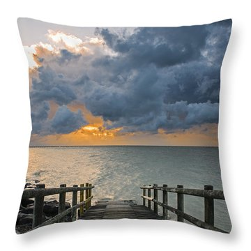 Passing Storm Throw Pillow by Trevor Chriss