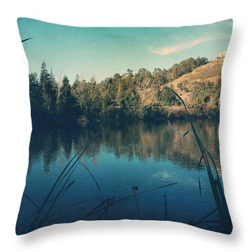 Passing The Day Away Throw Pillow by Laurie Search