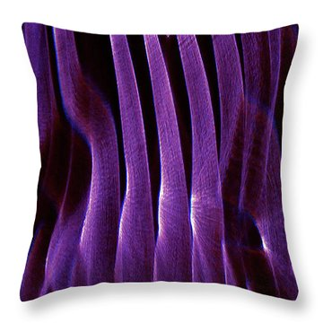 Passing Through Throw Pillow by CML Brown