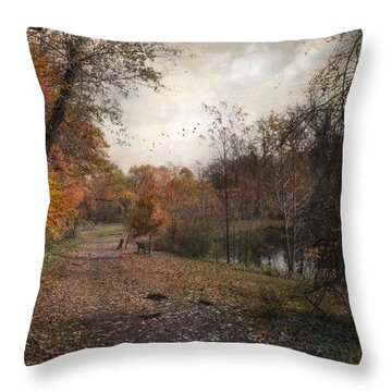 Throw Pillow featuring the photograph Passing Through Hopkins Pond by John Rivera