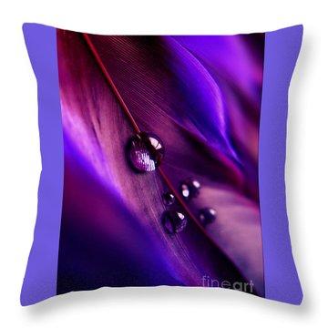 Treasures Within Throw Pillow