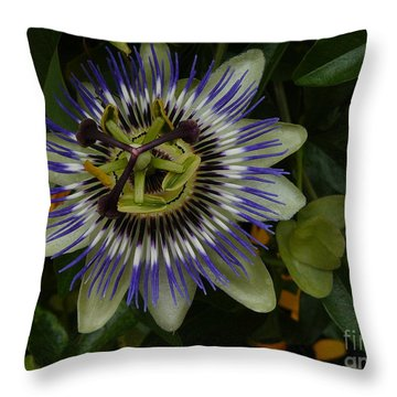 Throw Pillow featuring the photograph Passion Flower by Jane Ford
