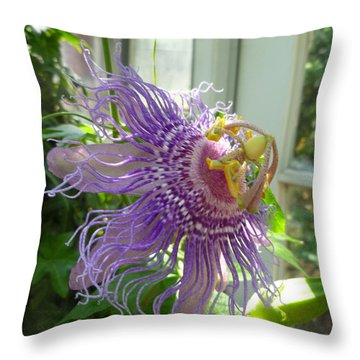 Passion Flower Throw Pillow by Lingfai Leung