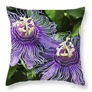 Passion Flowers Throw Pillow by Kenneth Albin