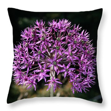 Passion No.2 Throw Pillow by Neal Eslinger