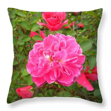 Passionate Pink Springtime Throw Pillow