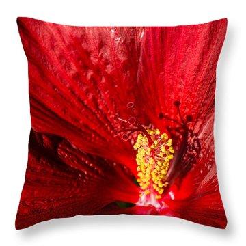 Passionate Ruby Red Silk Throw Pillow by Georgia Mizuleva