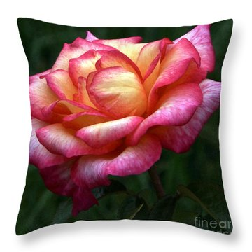 Passionate Shades Of A Perfect Rose Throw Pillow