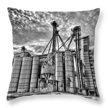 Past Elevation Throw Pillow