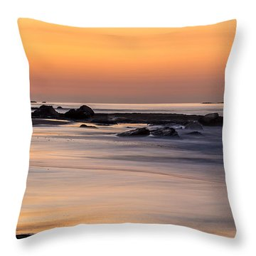 Past Meets Present By Denise Dube Throw Pillow