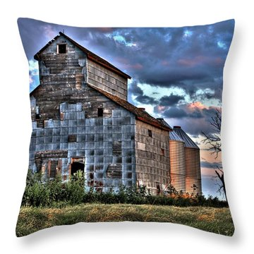 Past Times Throw Pillow