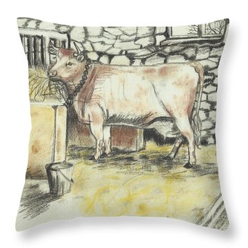 Cow In A Barn Throw Pillow