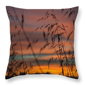 Pastel Moment II Throw Pillow