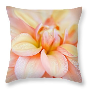 Pastel Petals And Drops Throw Pillow