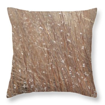 Pastel Prairie Throw Pillow by Tim Good