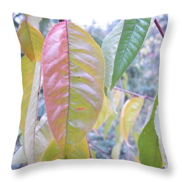 Pastel Symmetry  Throw Pillow by Brian Boyle