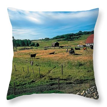 Pasture 2 Throw Pillow by Terry Reynoldson