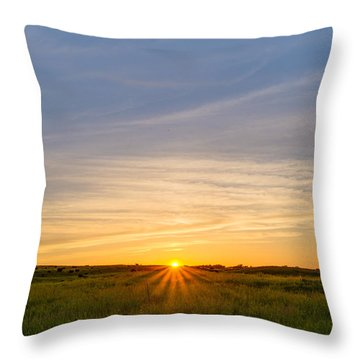 Pasture At Sunset Throw Pillow