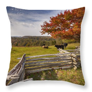 Pasture Fence Throw Pillow