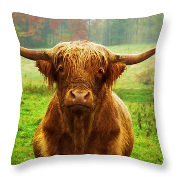 Pasture Portrait Throw Pillow