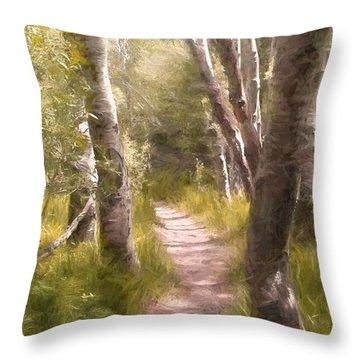 Path 1 Throw Pillow by Pamela Cooper