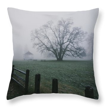 Path Along Park   Throw Pillow