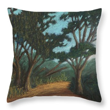 Path By Lake Murray 01 Throw Pillow