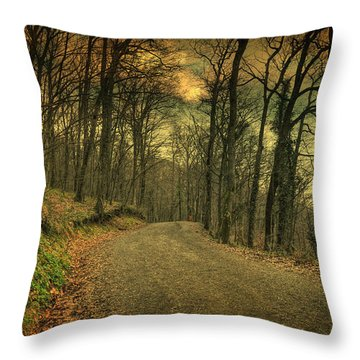 Path IIi Throw Pillow by Taylan Apukovska