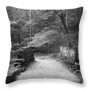 Path In Black And White Throw Pillow