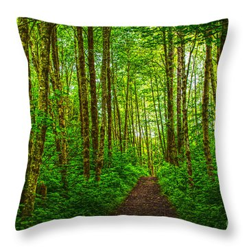 Path In Green Throw Pillow by Sonya Lang