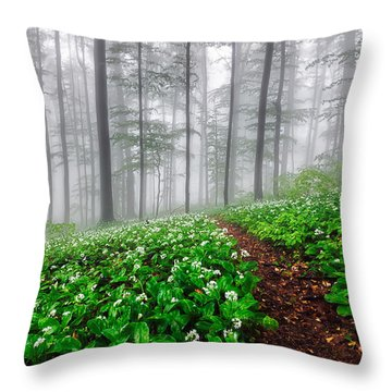 Path In The Mist Throw Pillow by Evgeni Dinev