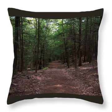 Path In The Woods Throw Pillow by Catherine Gagne