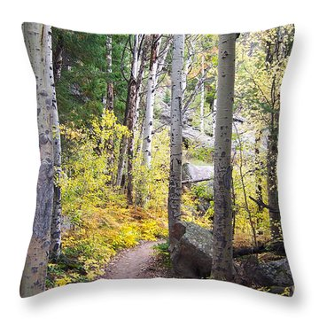 Path Of Peace Throw Pillow by Margie Chapman