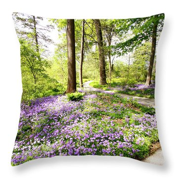 Path Of Serenity Throw Pillow