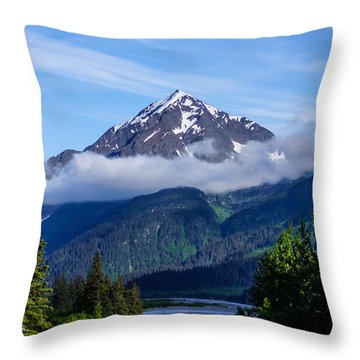 Path Through Alaska Throw Pillow