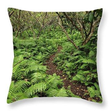 Path Through Jozani Np Zanzibar Tanzania Throw Pillow