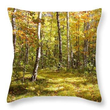 Path Through The Birches Throw Pillow by Susan Crossman Buscho
