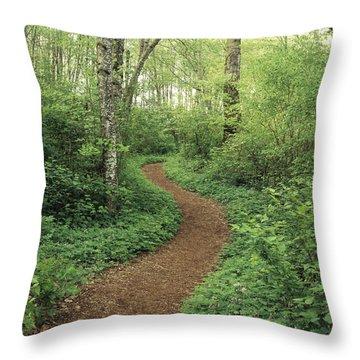 Path Through Woods Throw Pillow by Bert Klassen